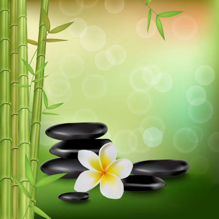 Green background of spa style with bamboo, frangipani and stones