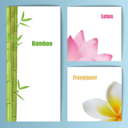 Exotic tropical flowers invitation card layout. Background design for banners Illustration