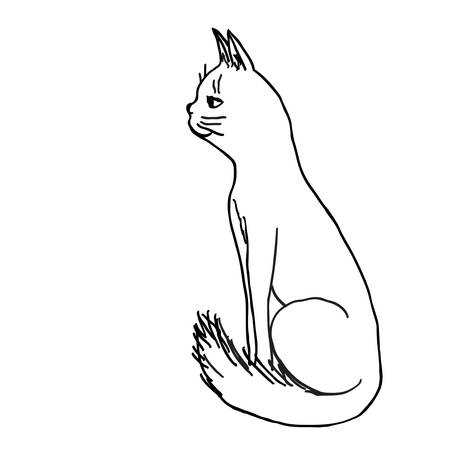 Smiling sitting cat. Sketch hand drawn vector outline illustration. Illustration