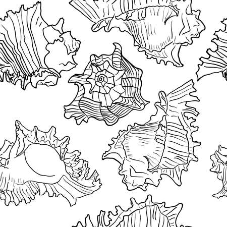 cockle: Seamless marine pattern with sea shells. Black and white color vector illustration.