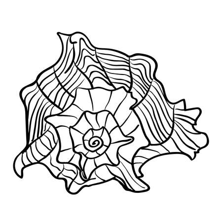 geologic: Marine hand drawn shell. Sketch cut-out vector illustration.