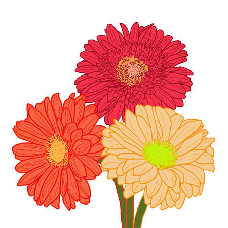summer flowers: Can use for greeting card, wedding invitation, birthday, funeral, party etc