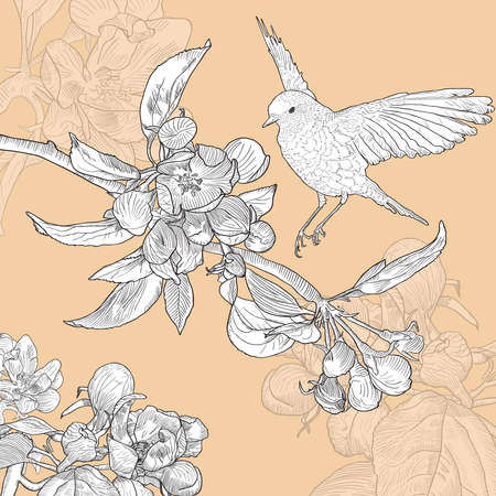 Vintage Floral Greeting Card with Bird and Blooming Apple on Beige Background. Vector Illustration with Place for Your Text. Hand Drawn Botanical Style. Ilustracja