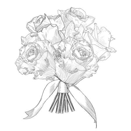 Hand drawn vector bouquet roses. Isolated illustration with fill and outline.