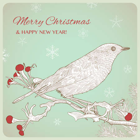 Hand drawn Christmas greeting card with bird sitting on twigs. Vintage vector illustration.