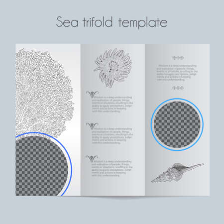 Sea template & tri-fold & mock up for brochure, menu, wedding, birthday card. Vector hand drawn illustration of sea shells in vintage technique.