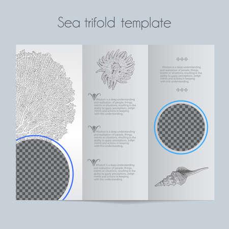 Sea template & tri-fold & mock up for brochure, menu, wedding, birthday card. Vector hand drawn illustration of sea shells in vintage technique.