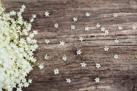 void: Wooden background with white blossom, copyspace, rustic style for greeting cards