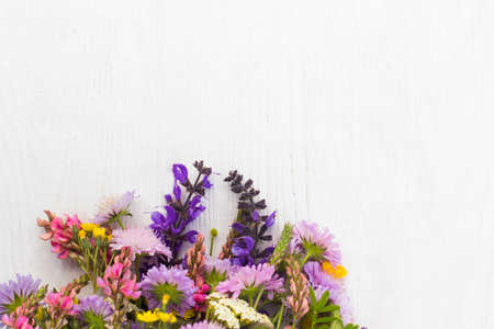 Bunch of wildflowers on white background