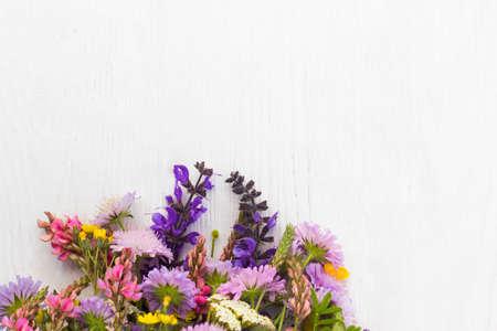 Bunch of wildflowers on white background Reklamní fotografie - 61530749