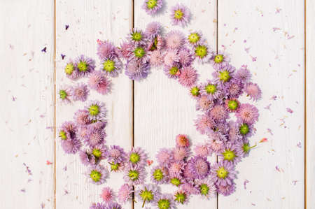 circlet: Beautiful circlet of purple aster flowers on white wooden background. Stock Photo