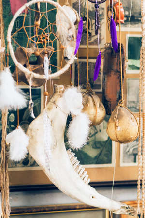 ancient relics: Art installation of decoration elements and animal bones. New beautiful dream catcher hang with skull of beast. Mix of modern craft products and ancient relics.