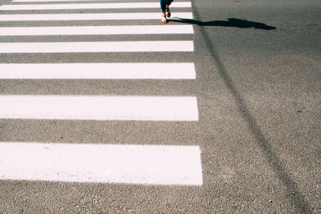 crossing legs: Pedestrian zebra with walking female legs and asphalt. Road crossing background, safe cross walk in city. Urban backdrop