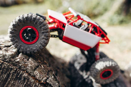 Crawler Toy Racing Rally Hobby Adult Leisure Entertainment Concept Stock Photo