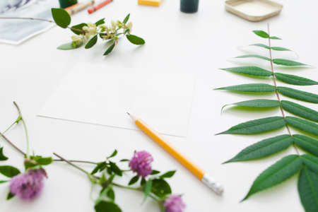 copy writing: Blank card in green plants frame free space. Empty paper sheet with pencil, copy space for text, sketch, message. Art, greeting, creativity, inspiration, writing concept