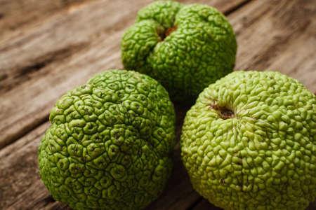 hedgeapple: Osage Orange Apple Maclura Exotic Tropical Fresh Fruit Natural Decoration Alternative Medicine Pharmacology Concept