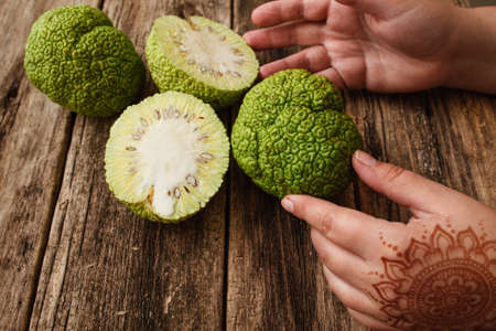 hedgeapple: Female hands with mehendi taking osage orange closeup. Asian woman with traditional decoration on hand holding green tropical Adams apple fruit, old grungy wooden background Stock Photo