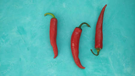 Red hot chili peppers on teal background. Culinary backdrop with free space