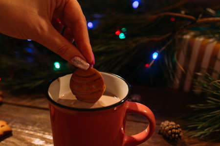 Winter holidays with latte and cookies. Close up of unrecognizable woman dips delicious gingerbread cake into warm cup of coffee with milk on Christmassy pine and fairy lights background Banco de Imagens