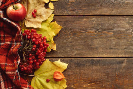 Fall leaves and berries background. Autumn harvest concept