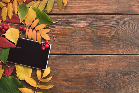 e-commerce autumn leaves wood background concept. Smartphone technology. Stock Photo