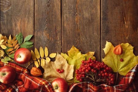 Autumn coziness ripe leaves mix wood surface concept. Colourful fall background. Stock Photo