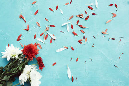 Beautiful flower bouquet on the blue background. Romantic concept. Pure and tenderness. Imagens