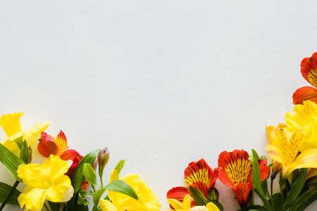colorful alstroemeria on white background. beautiful spring flower composition. floral decor. copyspace concept 版權商用圖片