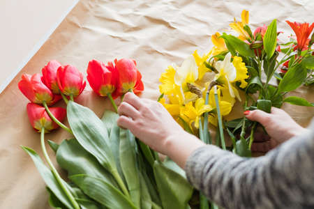 floral workshop. woman hands making a flower arrangement of assortment of red tulips yellow narcissus and alstroemeria. spring bouquet
