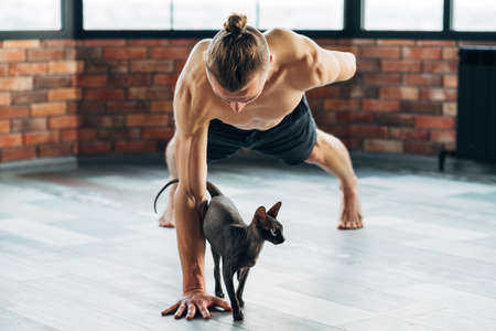 pet yoga. training with your animals can be fun. fit healthy strong yogi trying exercise with his sphynx cat.