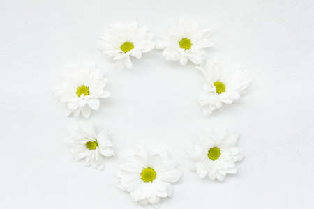 daisy wreath on white background. herbera flowers in a circle. minimalist floral decor. empty space concept Reklamní fotografie - 107792044
