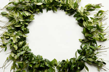 periwinkle leaves wreath on white background. green leafy foliage circle. minimalist floral decor. empty space concept