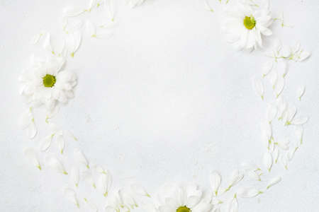 daisy wreath on white background. herbera flowers in a circle. minimalist floral decor. empty space concept