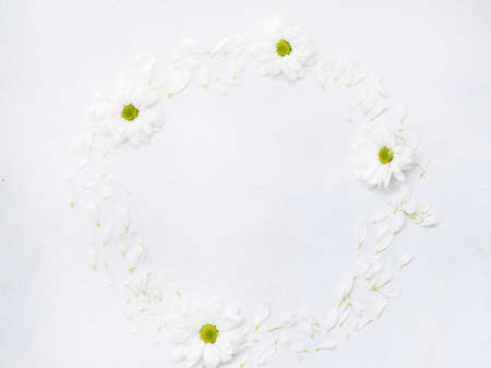 daisy wreath on white background. herberas in a circle. floristry and flower arrangement design. negative space concept.
