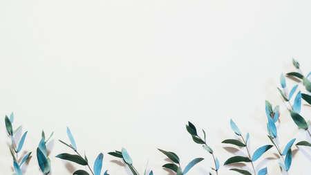 Foliage pattern design. Floristry concept. Fresh young stems on ivory background. Reklamní fotografie