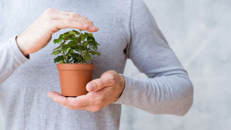 Ecology care movement. Environmental issues concept. Man covering houseplant. Stock Photo