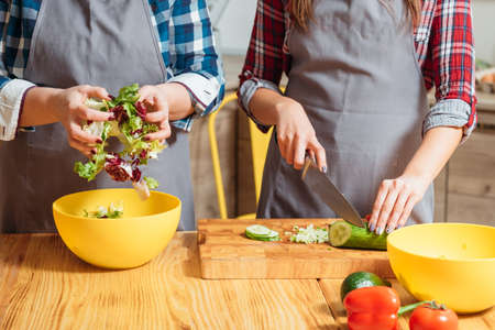 Midsection of women cooking. Making salad cutting veggies mixing chopped lettuce. Healthy nutrition vegetarian cuisine. Stock Photo