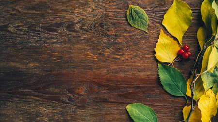 Arredamento rustico autunnale. Fondo di legno marrone con foglie di betulla caduta. Copia spazio.