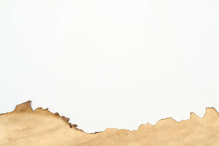 Cropped shot of aged surface beige paper with burnt edge on white background. Creative retro abstract art design. Copy space.