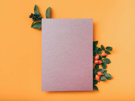 Party invitation letter. Purple mockup paper sheet with rose hip decoration on orange background. Copy space.