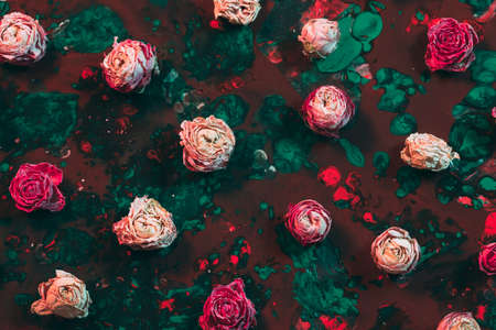 Abstract floral art background. Flat lay arrangement of pink dried rose buds on red and emerald green paint.