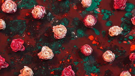 Creative floral background. Top view of pink dried rose buds on red and emerald green paint.