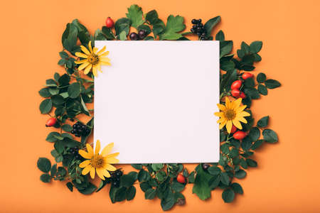 White empty paper. Holiday. Floral festive decor. Orange background. 版權商用圖片