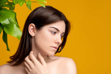 Skin detox. Organic cosmetology. Portrait of woman with fresh clean face bare shoulders with exotic plant green leaves isolated on orange copy space. Natural beauty wellness.