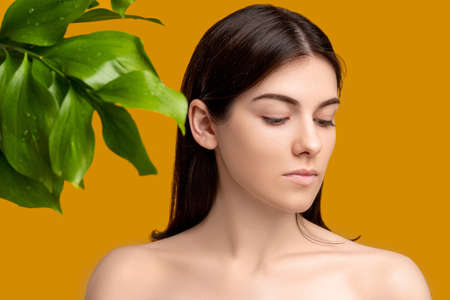 Aesthetic cosmetology. Perfect skin. Portrait of woman with fresh smooth clean face bare shoulders with exotic plant green leaves isolated on orange. Organic hygiene beauty.