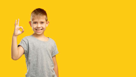 Kid choice. Commercial background. Approval sign. Perfect idea. Portrait of satisfied cheerful happy boy in gray t-shirt showing OK gesture smiling isolated on yellow copy space.