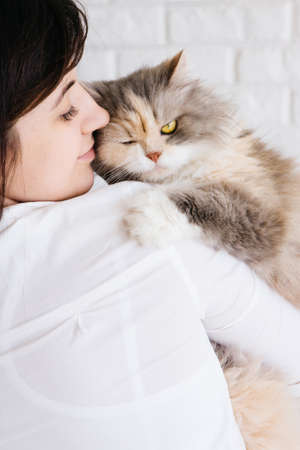 tenderly: Close up of young woman tenderly holds her fluffy cat in hands. Charming family pets and peoples love to them