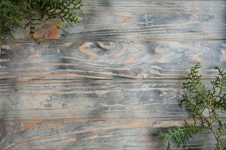 cedar or juniper branches decor on rough wooden background. pine twigs on timber surface with copy space concept.