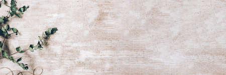 Floral background. Craft studio. Green laurel arrangement on beige textured surface.