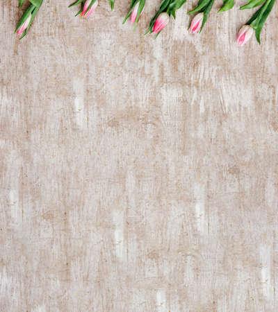 Floral background. Spring flower decor. Pink tulips on beige wooden textured surface. Zdjęcie Seryjne